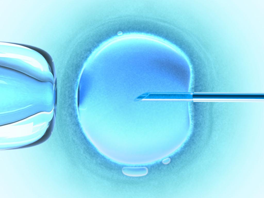 reproduccio assistida